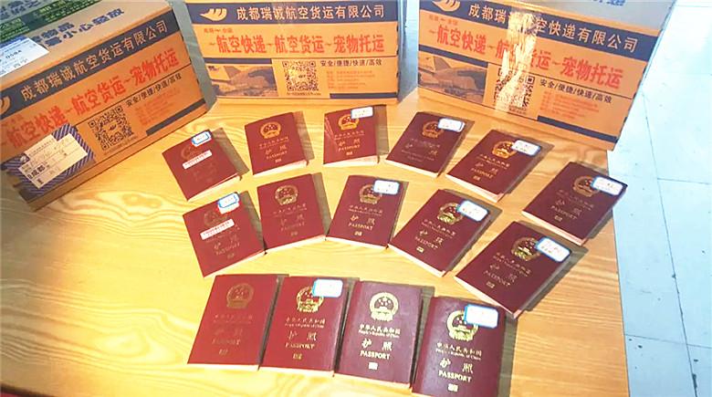 旅游签证,护照航空快递