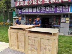 竞博jbo手机版瑞诚jbo竞博电竞货运提供专业木箱包装